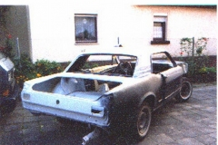 Mustang09.jpg