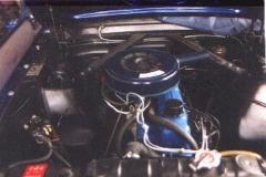 Mustang17.jpg