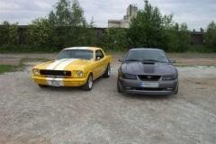 thomas-1966-gelb-vorne_20100729_1133470889