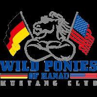 Wild Ponies of Hanau